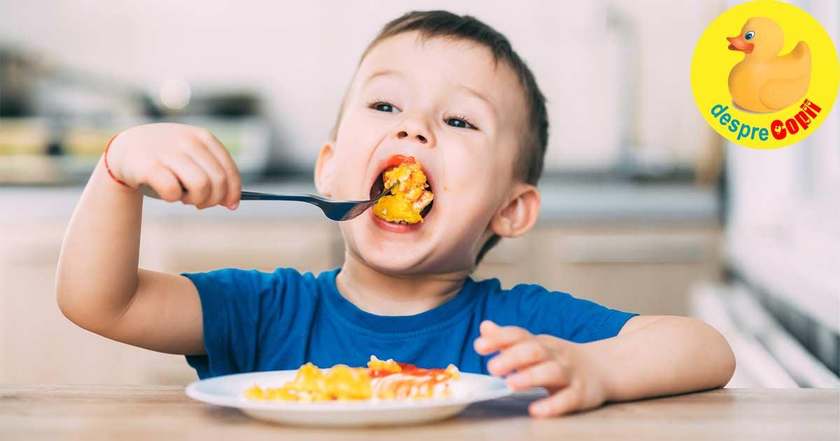 Oul in alimentatia bebelusului - importanta sa pentru dezvoltarea creierului