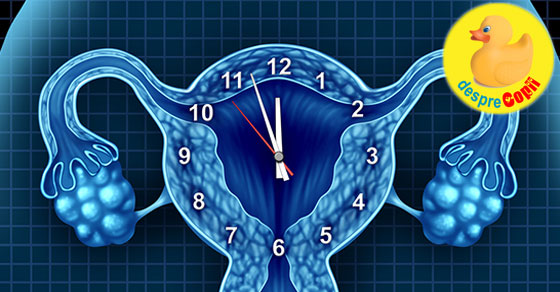 Tulburarile de ovulatie: cauze si efecte