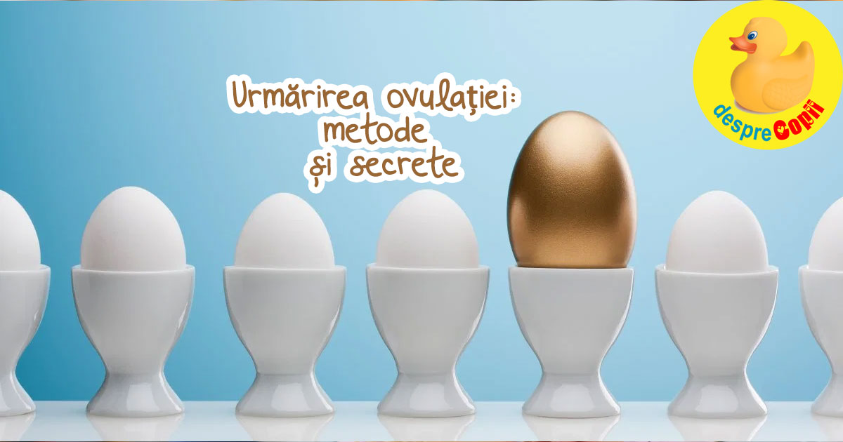 Urmarirea ovulatiei: metode si secrete