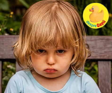 Cand copilul spune NU la orice sau ce afli cand copilul descopera independenta