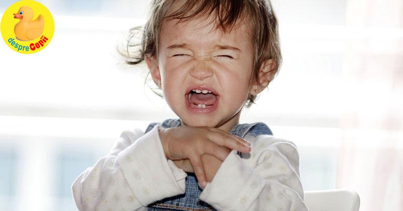 Perioada de negatie a unui copil: cum ne descurcam si sfaturi practice