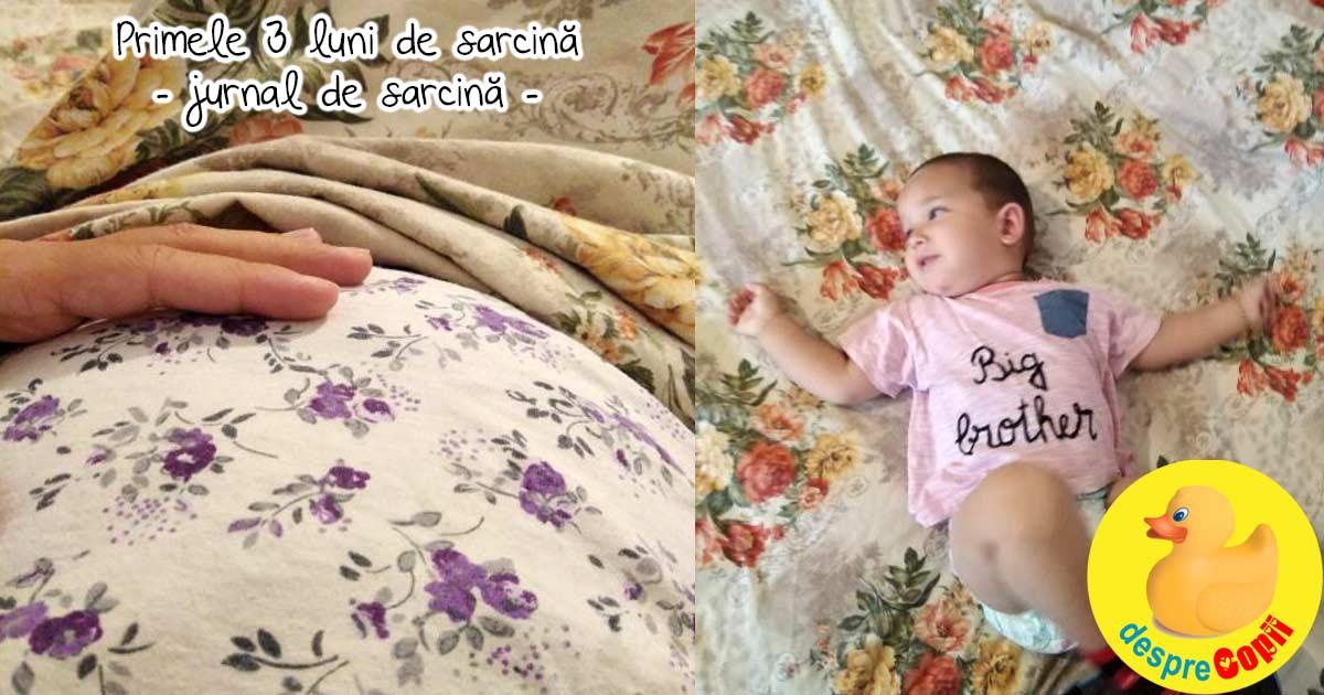 S-au scurs primele trei luni de sarcina  - jurnal de sarcina