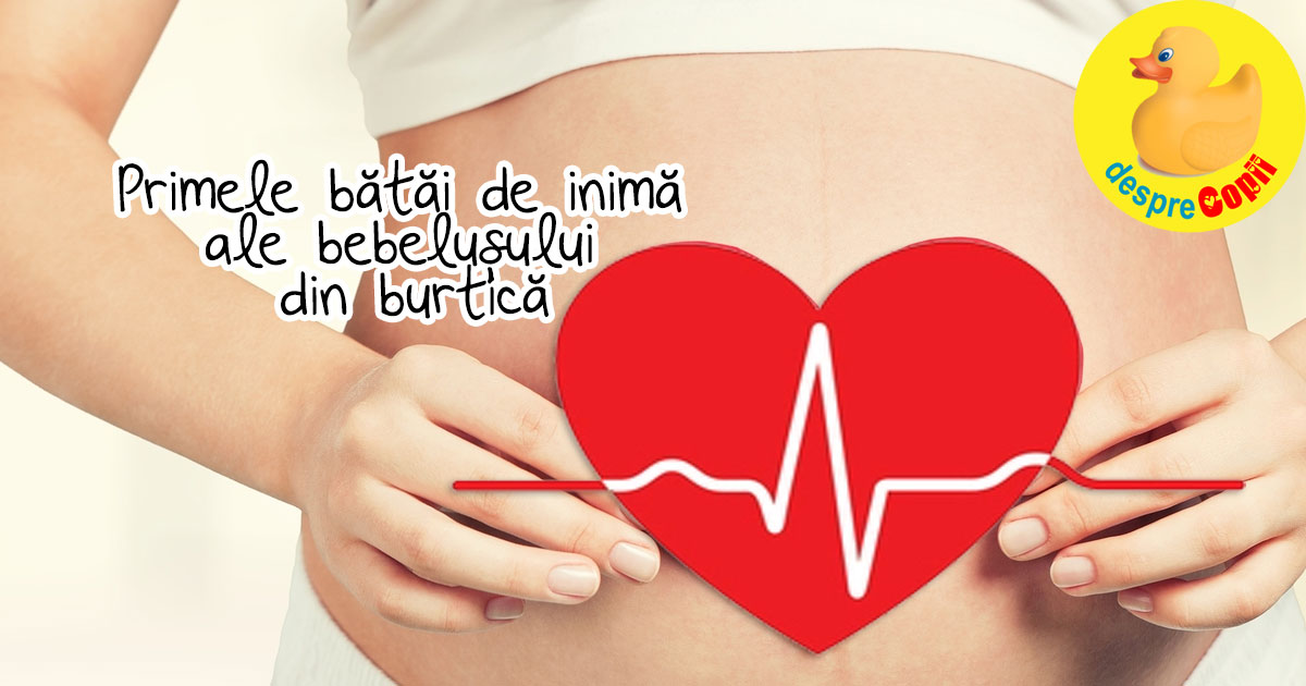 Primele batai de inima ale bebelusului din burtica mamei