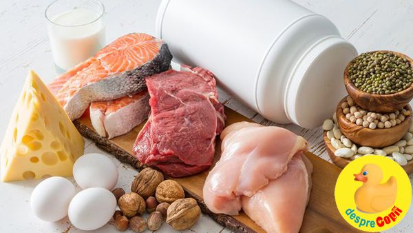 De unde luam proteinele?