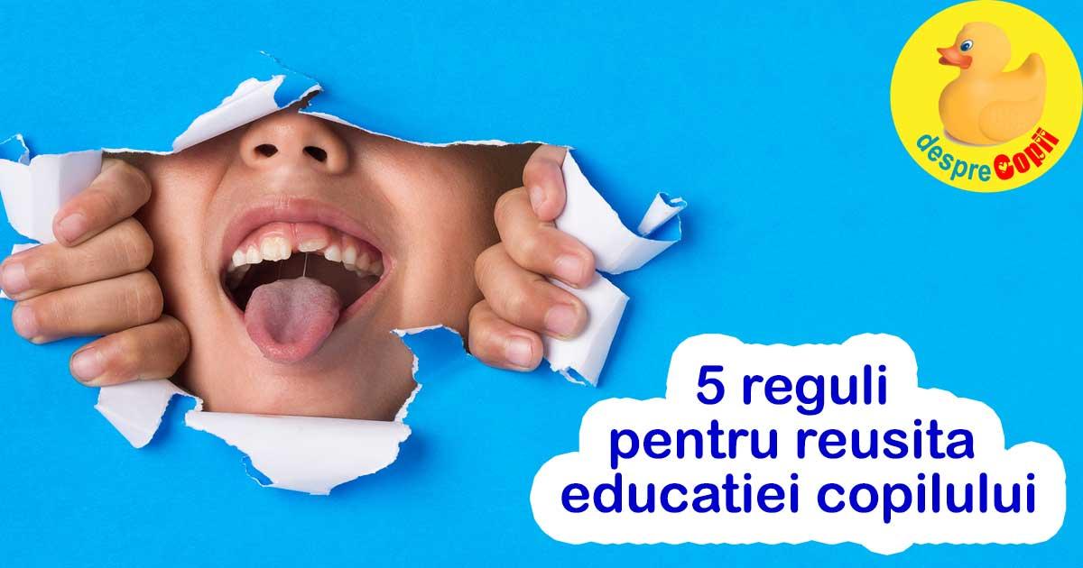 5 reguli pentru reusita educatiei copilului