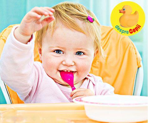 Retete pentru bebelusii de 12 luni: a saptea luna de diversificare