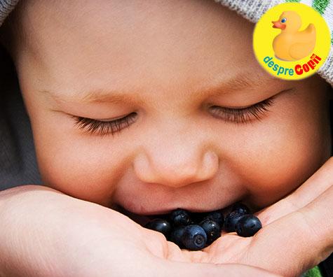 Cand poate bebelusul sa manance afine?