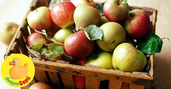 Marul, regele toamnei romanesti. 24 retete cu mere care aduc aroma toamnei in casa