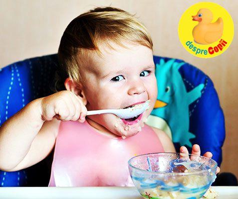 10 retete cu naut pentru bebelusi
