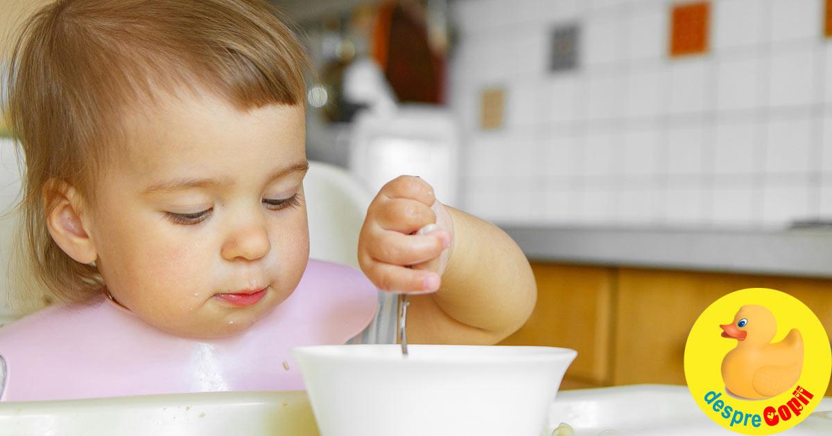 10 retete cu naut pentru bebelusi: bogate in proteine vegetale si fier