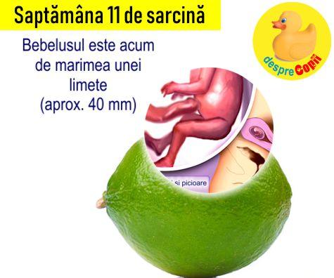 Saptamana 11 de sarcina