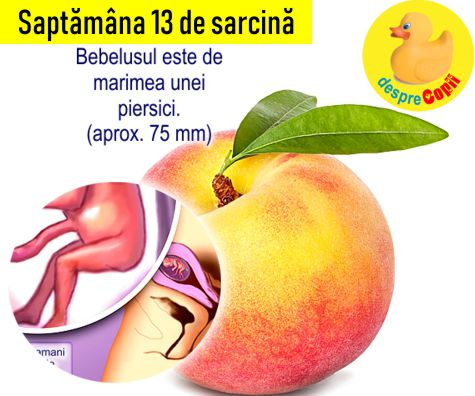Saptamana 13 de sarcina
