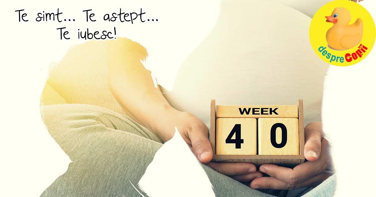 Azi se implinesc 40 de saptamani de sarcina iar de acum numaratoarea nu mai este inversa ci cu plus - jurnal de sarcina
