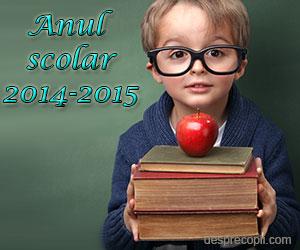 Structura anului scolar 2014-2015
