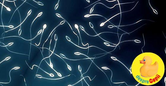 Spermograma: valori normale si diagnosticare