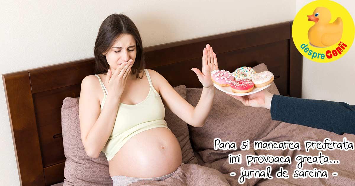 O lupta continua cu greata. In sarcina nu e totul roz se pare - jurnal de sarcina