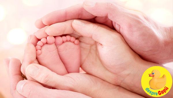 FIV, donare de ovocite si mama surogat - tot ce trebuie sa stii de la specialistii de la BIOTEXCOM