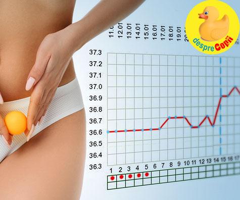 Urmarirea ovulatiei si a zilelor fetile cu ajutorul monitorizarii temperaturii bazale - iata cum se face