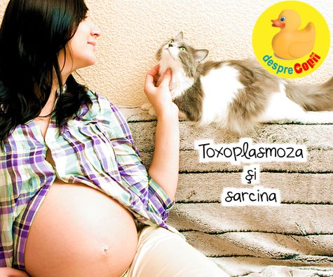 Toxoplasmoza si sarcina