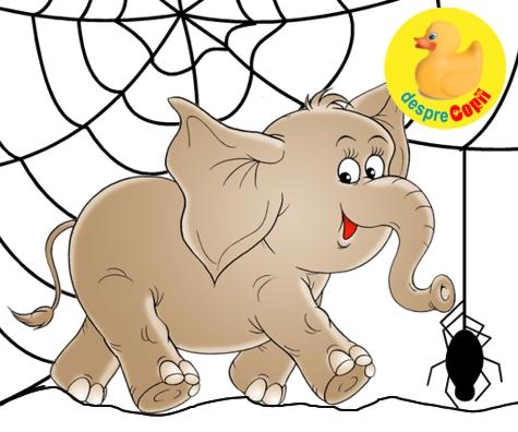 Un elefant se legana pe o panza de paianjen