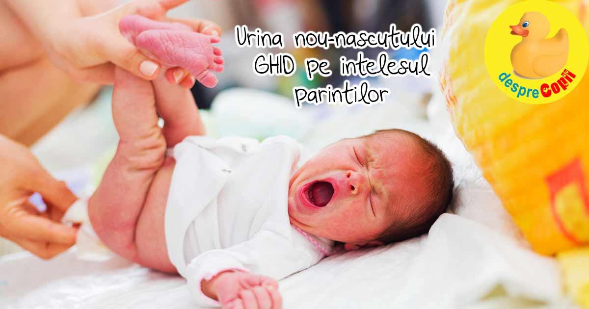 Urina nou-nascutului - un ghid de pipi pe intelesul parintilor