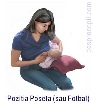 POZITIA POSETA
