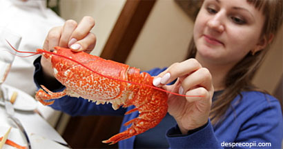 /Images/alaptare-crustacee.jpg