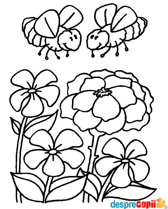 /Images/albinute si flori.jpg