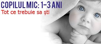 Copilul 1 - 3 ani