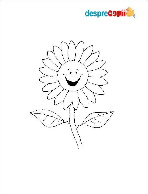/Images/floare.jpg