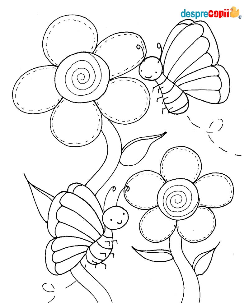 Flori Si Fluturasi Desprecopiicom