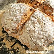 paine bicarbonat de sodiu