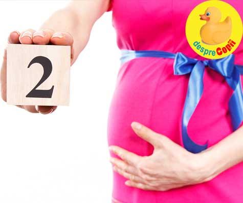 Primele 2 luni din odiseea sarcinii - jurnal de sarcina