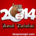 2014 - Anul Calului