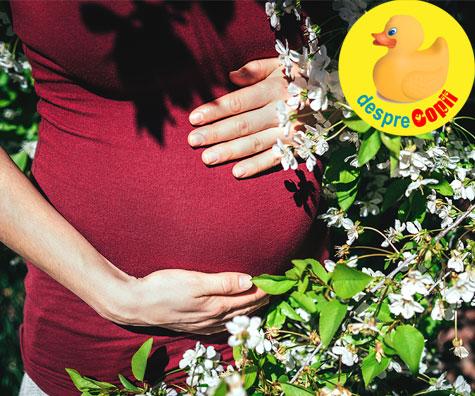 Luna a cincea de sarcina in linia intai de lupta - jurnal de sarcina