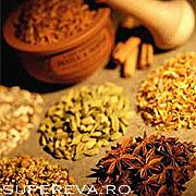 Cele mai importante 8 plante medicinale (2)