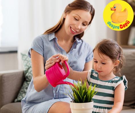 Ajutorul din timpul sarcinii: cand soacra te ajuta vrei nu vrei - jurnal de sarcina