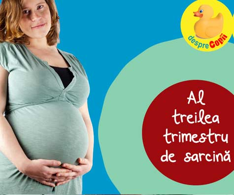 Al treilea trimestru de sarcina - trimestrul in care bebe si mami cresc vertiginos