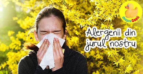 Alergenii din jurul nostru