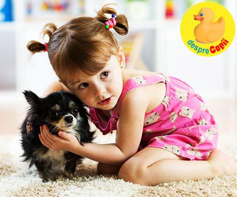Ce animal de companie ar trebui sa adopte familia ta?  Iata 9 animalute cu pro si contra