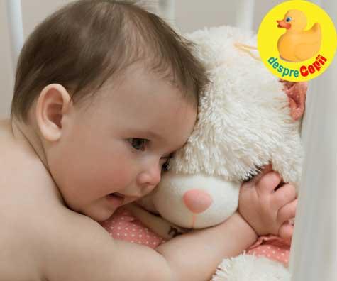La 4 luni, bebe e pregatit pentru un animalut de plus pentru imbratisari. Iata 6 reguli de siguranta de respectat.