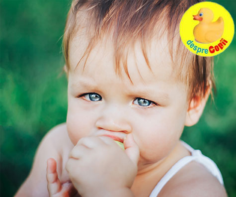 Ce mananca bebelusul la 11 luni?