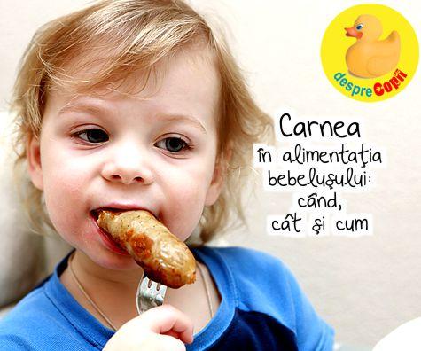 Carnea in alimentatia bebelusului: cand, cat si cum