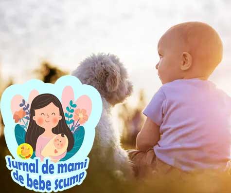 Bebe e un aspirator de scame: despre microbii benefici de langa noi -  jurnal de mami de bebe scump