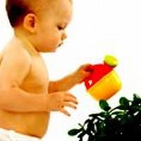 Etapele de dezvoltare ale bebelusului
