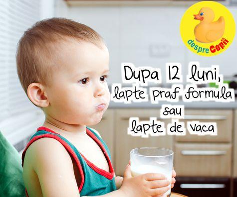 Dupa 12 luni, dam copilului lapte praf formula sau lapte de vaca?