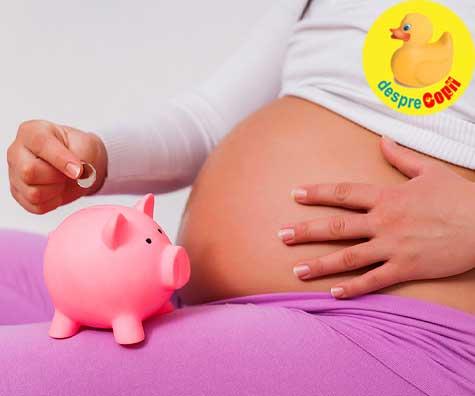 Cum putem sa traim cu salariul de 3000 lei - jurnal de sarcina