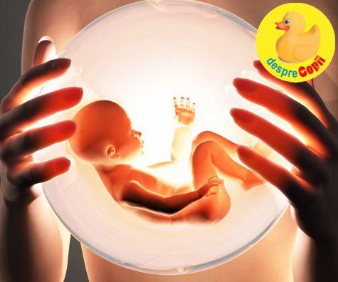 In burtica mamei: miscarile si simturile bebelusului. E atat de multa miscare si veselie acolo.