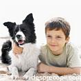 Animalele de companie ii protejeaza pe copii de bolile respiratorii