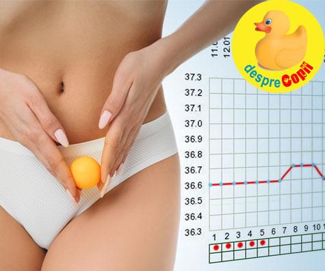 Imi doresc un copil: Cum calculez perioada fertila? Calculul ovulatiei